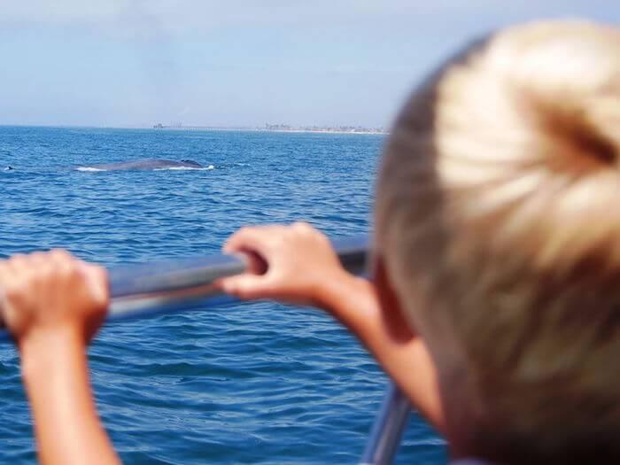 kinderen la walvissen